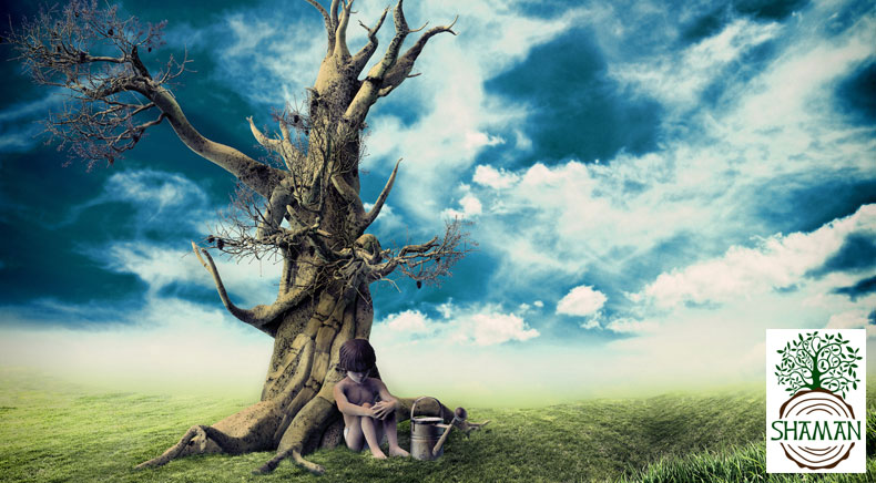 What does the purification of fate from bad family program mean